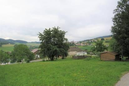 Sonniges Grundstück im Mühlviertel