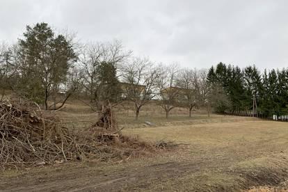 Großes Grundstück an der Grenze Güssing