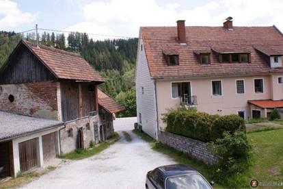 Zwischen Leoben und Wolfsberg: Wohn- und Geschäftshaus