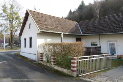 Nähe Stadtschlaining: Renoviertes Landhaus in Ruhelage!