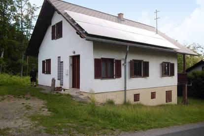 Weinregion Eisenberg: Schönes Kellerstöckl mit Wald