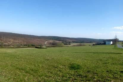 Nähe Eberau: Wunderschönes Grundstück mit eigener Reitanlage