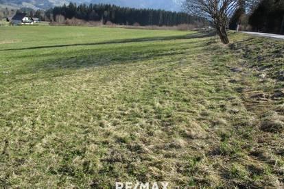 Freiland unmittelbar an der B146