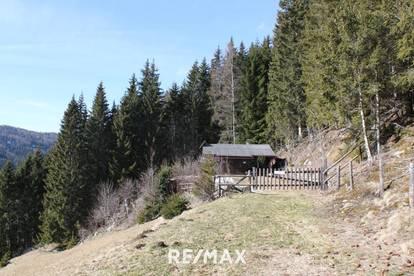 Almhütte/Berghütte in sonniger Alleinlage auf ca. 1.280m