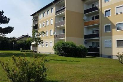 """""""3 Zimmer-Wohnung mit Loggia """""""