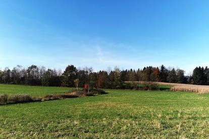 Baugrundstück, 990 m², St. Kanzian/Klopeinersee, Sonne von früh bis spät