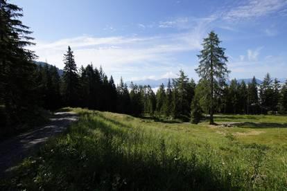Grundstück auf der Leppner Alm zu verkaufen