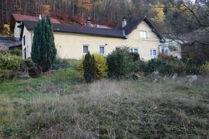 großes Grundstück mit sanierungsbedürftigem Wohnhaus