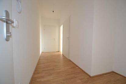 Neubau - Zentrum/Annenviertel - 50m² - 2 Zimmer Wohnung - große Süd-Dachterrasse