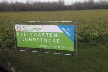 SPRINGSFIELD 2.0 - Kleingartenanlage/Pachtparzellen Hauptwohnsitz möglich