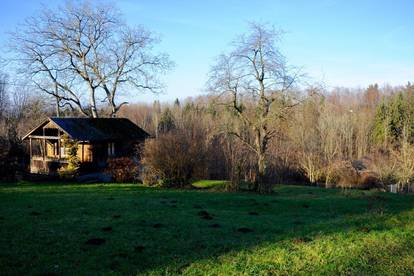 NATURSCHÖNHEIT - Baugrundstück mit 1630 m2 in St. Ulrich bei Steyr