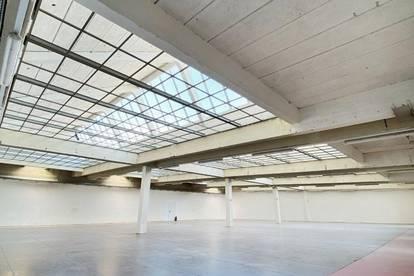 Büro- und Hallenflächen in guter Lage in 1230 Wien zu mieten