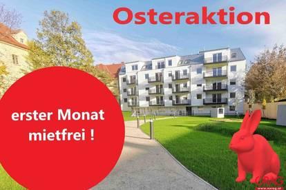 Florido Yards: 3 Zimmer-Wohnung mit Eigengarten zu mieten in 1210 Wien
