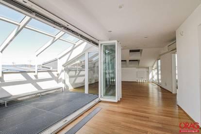 5-Zimmer-Wohnung mit Terrasse und Loggia am Opernring - Miete in 1010 Wien