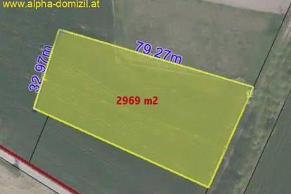 Betriebsgrundstück ca. 3.000 m² FIXPREIS!