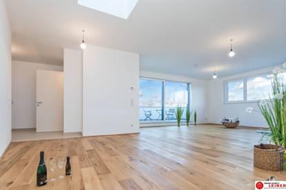 52,65m² Wohnfläche - Lichtdurchflutete Dachgeschosswohnung im Grünen - 2 Zimmer mit Terrasse