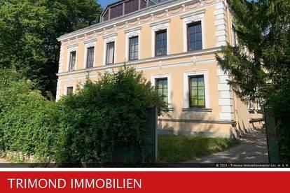 Wunderschöne, helle, großzügige Dachgeschoßwohnung mit Gartenbenützung - direkt in Neulengbach gelegen!