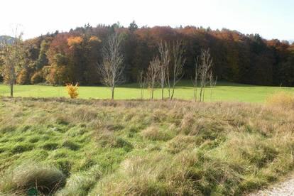 Grünland-Grundstück in Großgmain