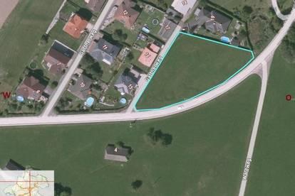 Ebenes Grundstück  für Einzel- und Doppelhaus    3 Parzellen