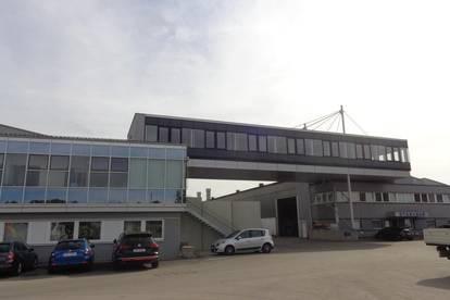 Große Halle mit 25 Tonnenkran   1800 m2 mit Werkstättengenehmigung im Gewerbepark Primetzhofer