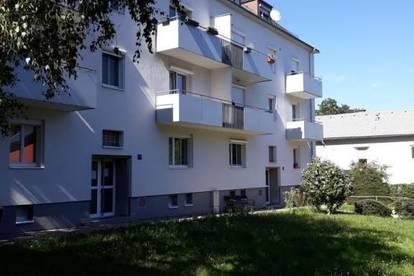 Solide 2 - Zimmer Wohnung in zentraler Stadtlage - Freinbergnähe