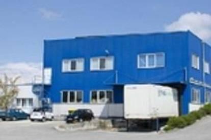 Bürogebäude und Hallen in Eggendorf    -derzeit noch  500 m2 Lagerfläche ohne Büro verfügbar mit Rampe.