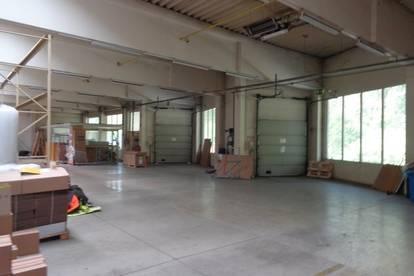 Große Hallenfläche direkt an der B1 mit Rolltoren und Laderampen langfristig zu vermieten!