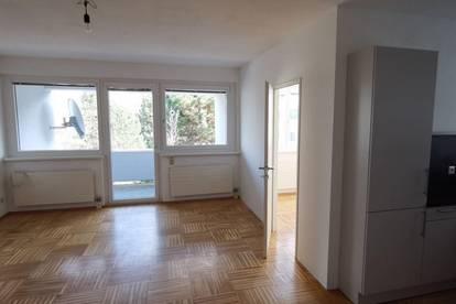Bisamberg: Helle 1 1/2-Zimmer-Wohnung mit Grünblick