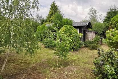 Teilbares Kleingartengrundstück (Eigengrund) mit kleinem Holzhaus