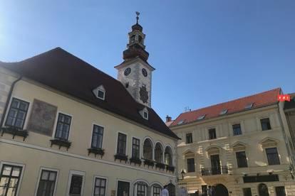 Dachgeschoßwohnung beim Rathaus mit Terrasse und Gartenmitbenützung