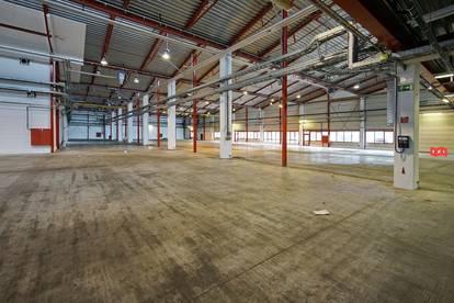 Betriebsliegenschaft mit mehreren Industriehallen in Gewerbegebiet Tulln (Halle1)