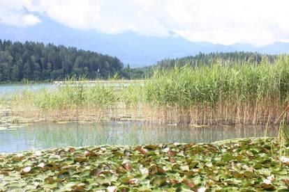 Großzügiges Grundstück in Seenähe