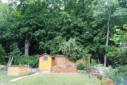 Sonniges Domizil direkt am Schlosspark