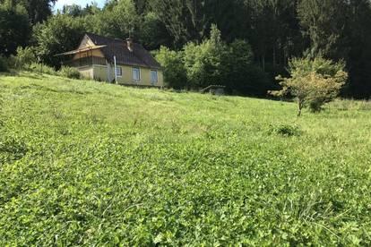 Sanierungsbedürftiges Landhaus mit großer Gartenfläche.