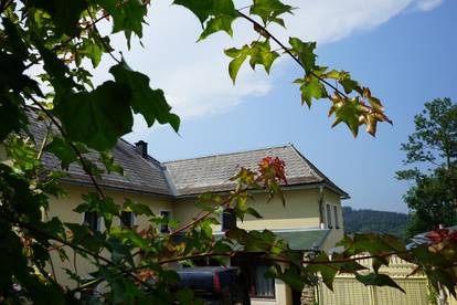 Charmantes Haus inmitten grüner Wiesen