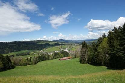 Bodenseeblick in Alberschwende