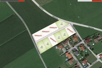 Micheldorf/Heiligenkreuz: Nur mehr 5 Grundstücke zu verkaufen