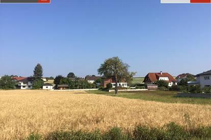 432 m² Grund mit Doppelhaushälfte in Pinsdorf ab € 370.269,-