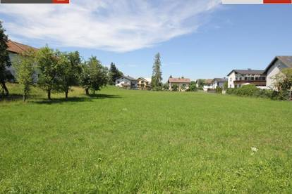 Nur für kurze Zeit Gmunden: 261 m² Grund+Haus ab € 327.990,-