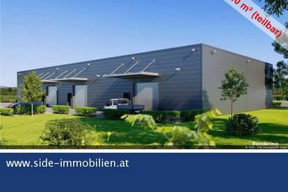 A2 Exit Baden - moderne Mehrzweckhalle (Neubau) ab Sommer 2021 zu mieten