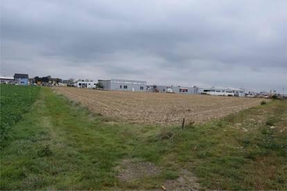 Tulln: Betriebsbaugrundstücke langfristig zu mieten (Baurecht möglich)