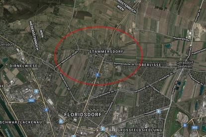 Stammersdorf: Geschäftslokal ca. 500 m² in sehr guter Frequenzlage ab Juni 2021 zu mieten
