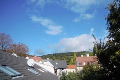 5 Minuten vor Wien! Ein-/Zweifamilienhaus im Herzen von Langenzersdorf! Arbeiten und Wohnen unter einem Dach!
