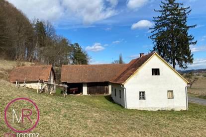 Sanierungsbedürftiger Hof in Bad Gleichenberg/Umgebung