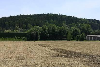 Baugrundstück mit Grünlandanteil für Projektentwickler