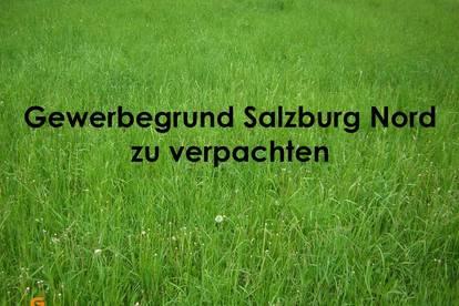 Salzburg Nord Gewerbegrundstück zu verpachten