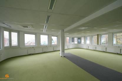 Salzburg Nord - Moderne Büroetage / Ausstellung / Showroom zu vermieten