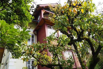 Einzigartig! entzückende sonnige 3 Zimmer Dachgeschoßwohnung mit Terrasse Bad Ischl