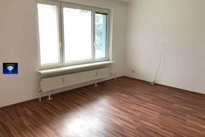 Sehr gepflegte Single-Wohnung im EG - 013018
