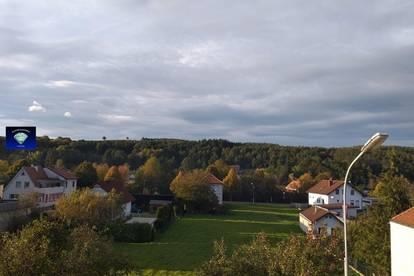 Piringsdorf renovierungsbedürftiges Einfamilienhaus mit viel Potenzial - 101900